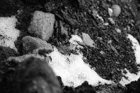 Daniel Welschinger, eterno diamante de agua