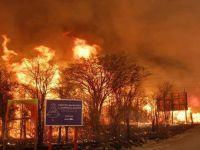 La prevención es fundamental para evitar incendios forestales