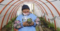 Dieron inicio a la segunda etapa del programa Invernaderos en Bariloche