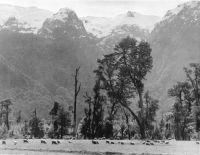 Tres hoteles, albergues y una fonda en los albores de la Bariloche hotelera