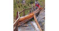 Sendero a Refugio Frey cerrado por seguridad