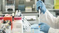 El suero equino contra el Covid-19 evidencia beneficios clínicos