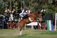Llega la segunda fecha del campeonato rionegrino de jineteada
