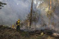 En lo que va de 2021, hubo un 90% menos de incendios forestales que en 2020