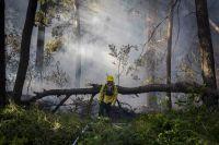 Pedro Curuhual, 30 años al servicio de la comunidad combatiendo incendios forestales