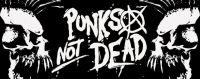 """""""El movimiento punk está vivo"""""""