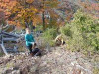 Cómo es el inmenso desafío de reforestar en el cerro Otto