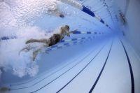 Descubre cuáles son los deportes más practicados en todo el mundo